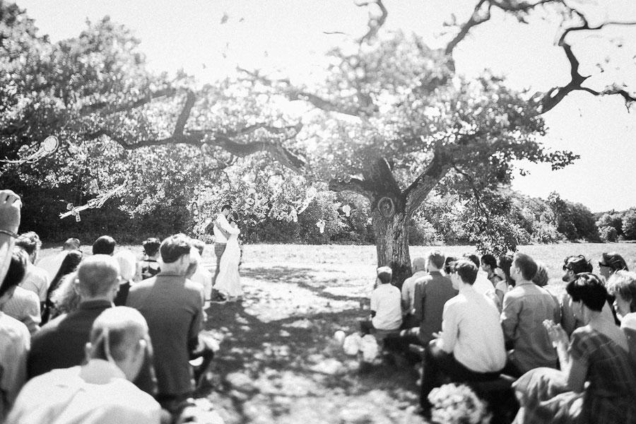 Netradicinė vestuvių ceremonija po medžiu pievoje