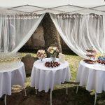 DelicateDecor - svečių vaišinimas po santuokos ceremonijos